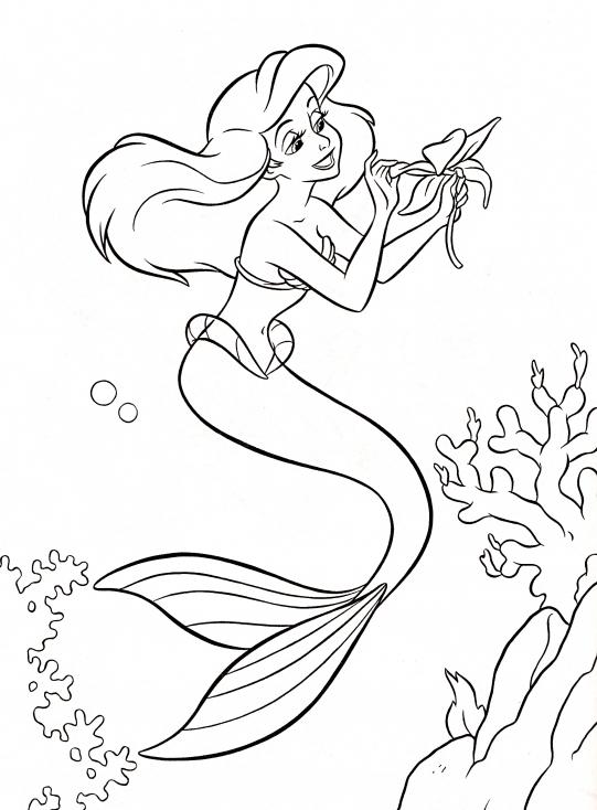 Coloriage Ariel La Petite Sirene A Imprimer