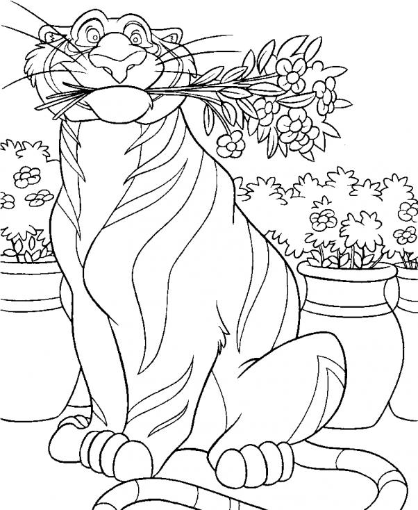 Coloriage tigre Rajah