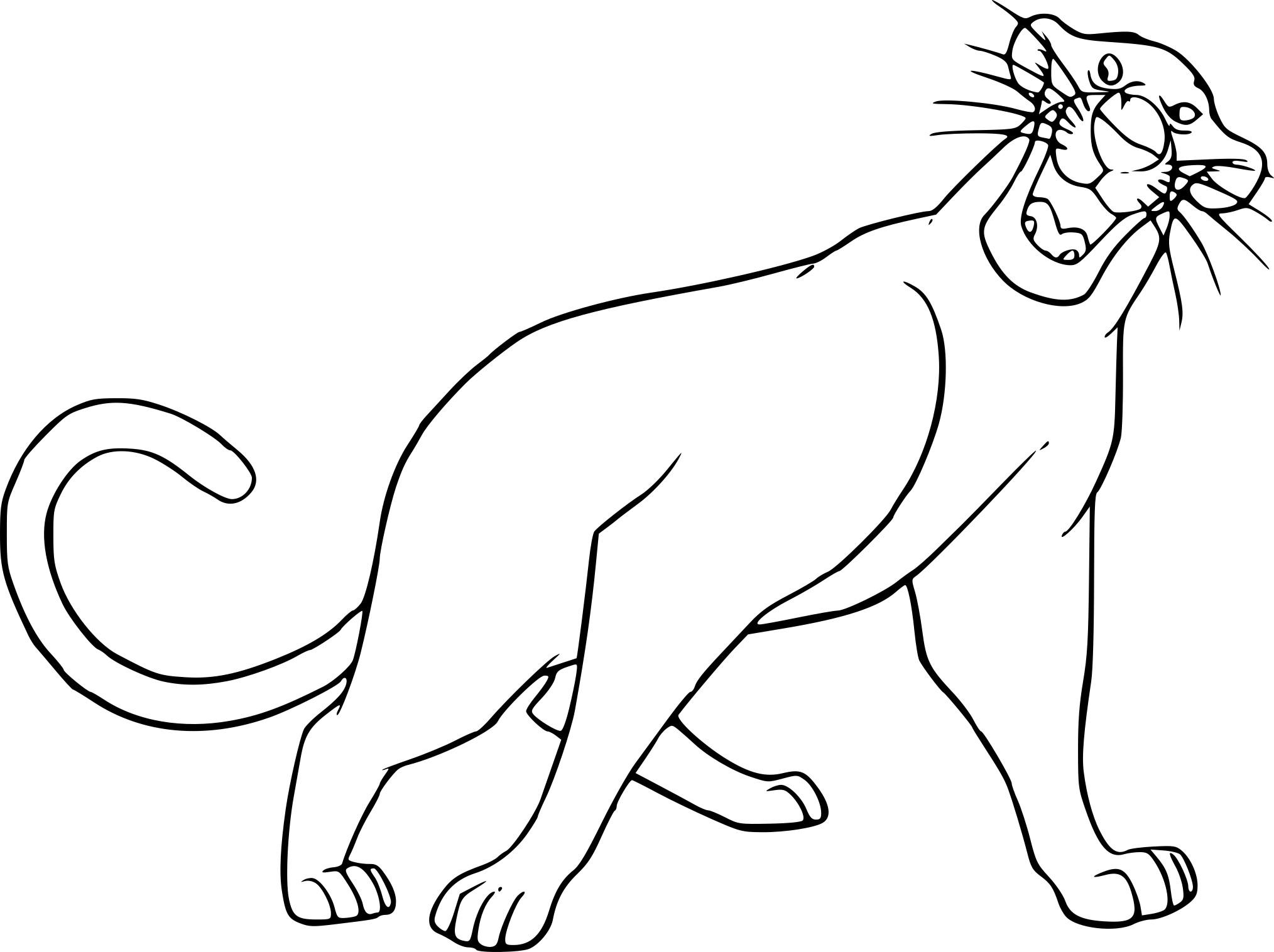Coloriage Panthere Bagheera A Imprimer